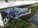 2016.11.04 Öl im Fluß Chamb