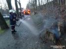 Brand Baumstumpf Meranweg